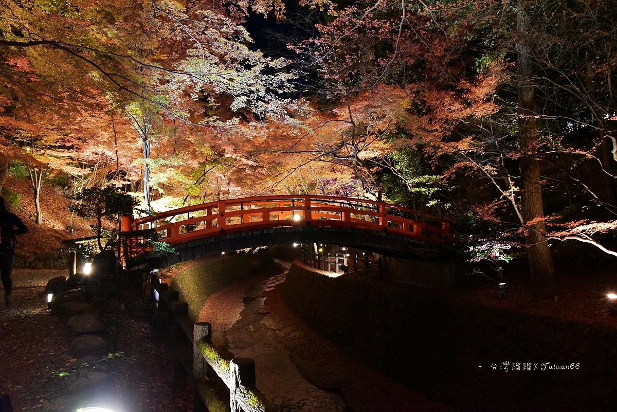 [日本]北野天滿宮夜楓
