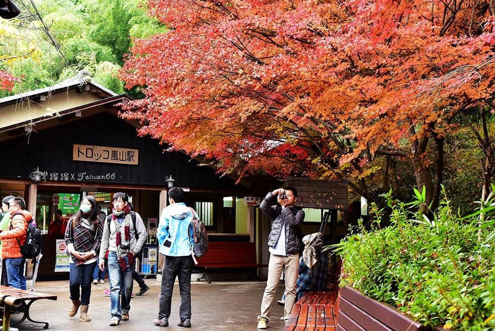 嵐山,嵯峨野小火車