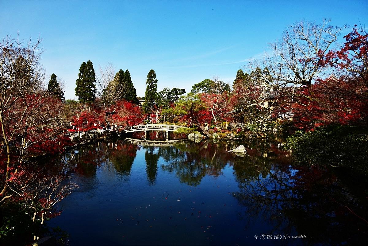 永觀堂 放生池
