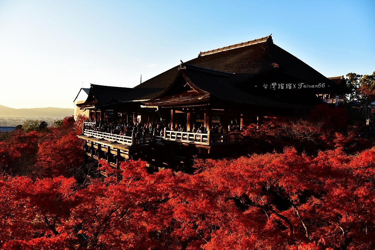 [日本]清水寺